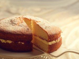 Sponge-cake Slice